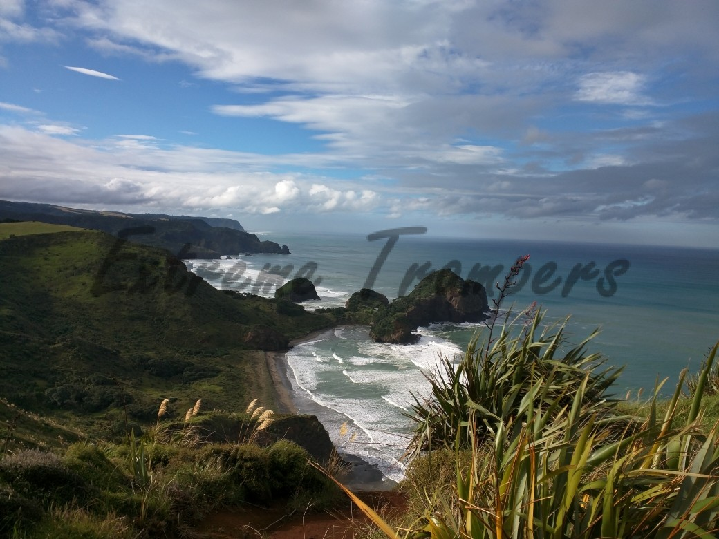 North_Bethells_Beach_Tramp_001