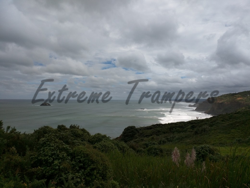 North_Bethells_Beach_Tramp_003